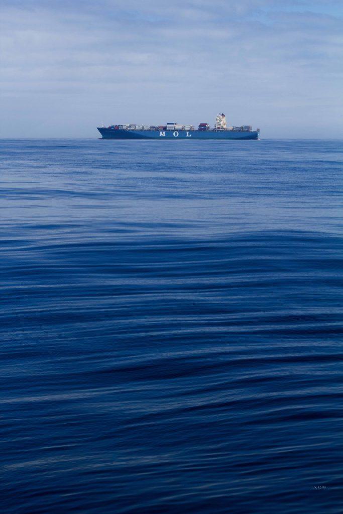 US_GO-SHIP_I06S_2019_048